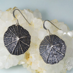 Solid Silver Limpet Mermaid's Shell Earrings